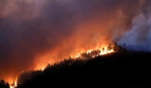 希腊山火蔓延持续数日  政府向欧盟请求协助进行空中灭火